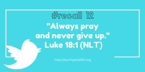 recall-12-feb-verse
