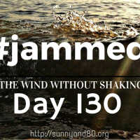 The Soft Tissue (#jammed daily devo, day 130)