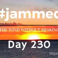 The Night In. (#jammed daily devo, day 230)