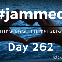 The Seeker (#jammed daily devo, day 262)