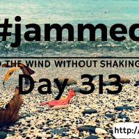 The Crossfire (#jammed daily devo, day 313)