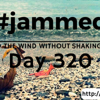 The Bossy Cow (#jammed daily devo, day 320)