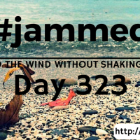 The Wing Seat (#jammed daily devo, day 323)