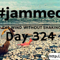 The Manatees (#jammed daily devo, day 324)