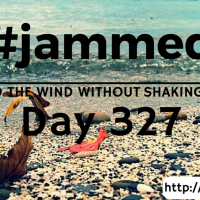 The Swing (#jammed daily devo, day 327)