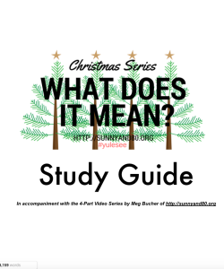 What Does It Mean Study Guide Cover pic